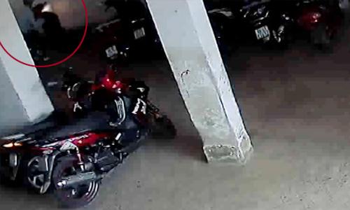 Bao ve xem lai camera Oi That cay dang ao mua 10000 dong doi xe SH
