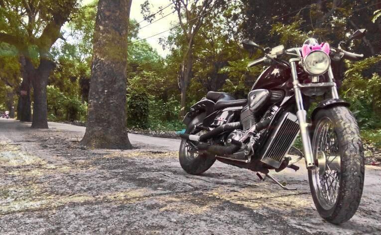 Honda Steed VLX 400 gia tot