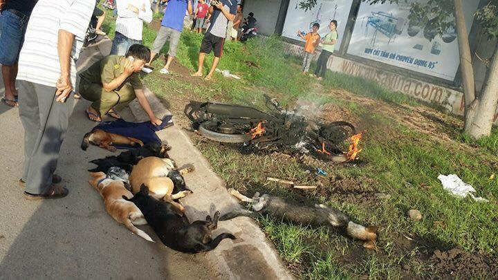 Chay Exciter 2010 trom cho cai ket DANG bi danh SML cung con ngua chien bi thieu rui - 6