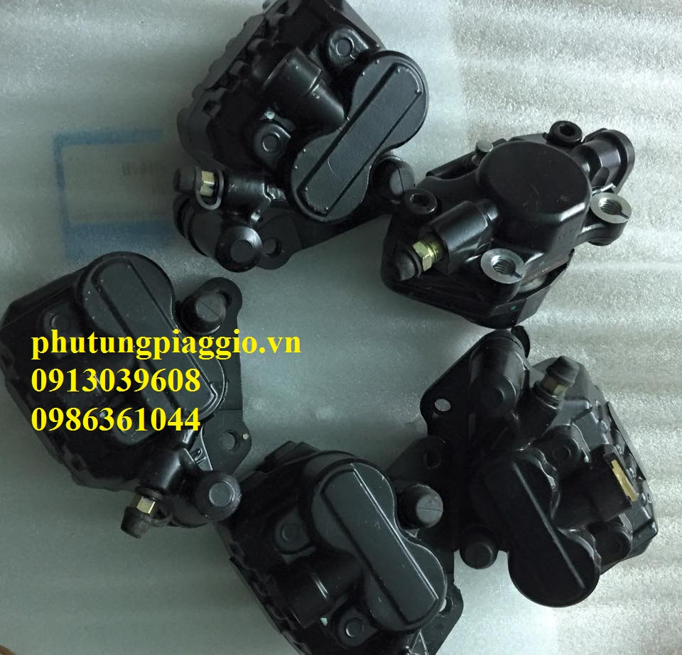 Phu Tung Piaggio HOA DA 429 Giai Phong LxLx VLibertyFlyZipETGTVespa C - 2