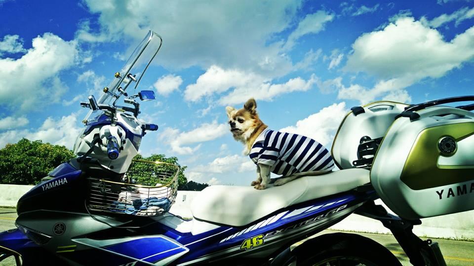 Bo anh chu cun dang yeu di phuot tren chiec Exciter 150 do cua biker nuoc ban