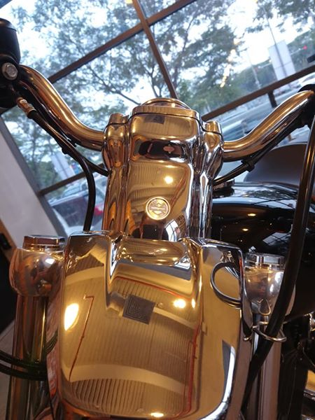 HarleyDavidson Sporter 1200 Custom gia danh cho mua Tet - 14
