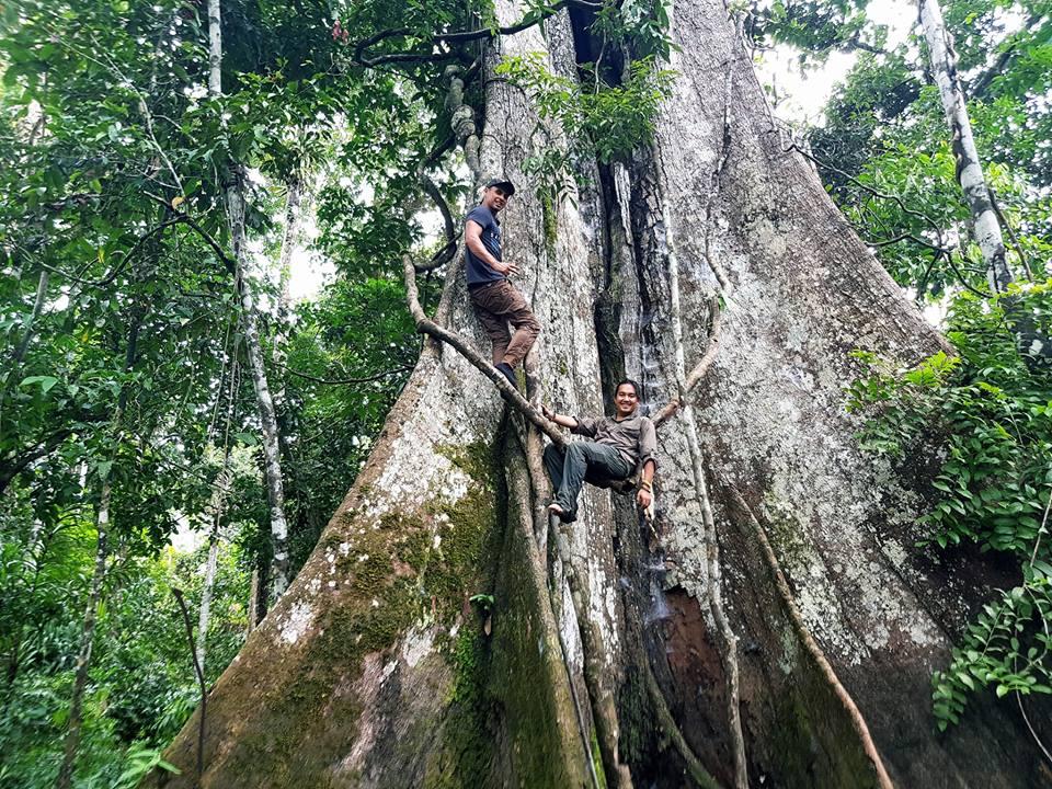 Tran Dang Dang Khoa lac troi giua rung Amazon voi nhung bi an day thu vi - 8