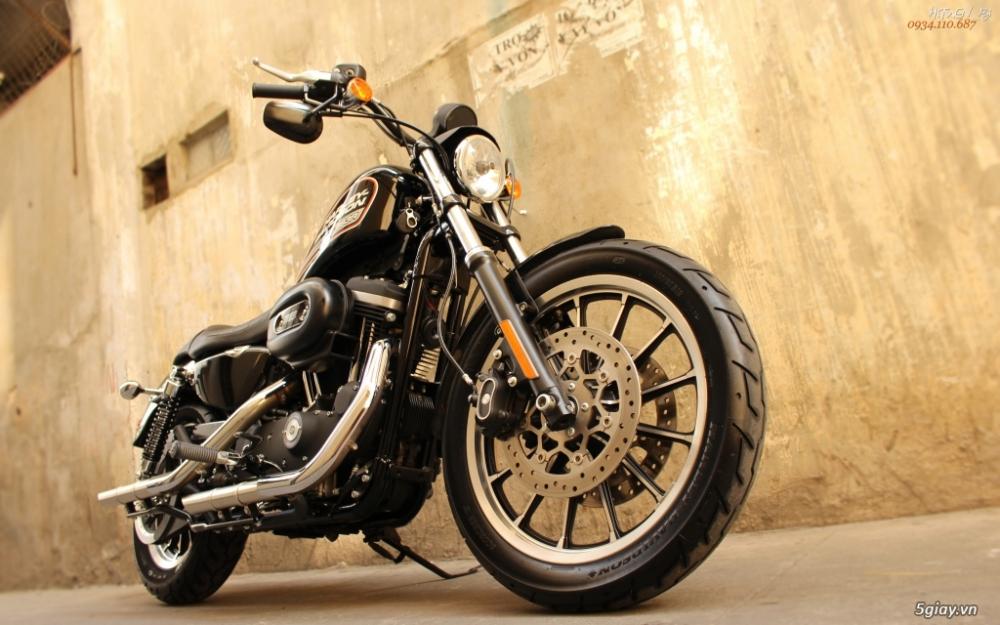 ___ Can Ban ___HARLEY DAVIDSON 883 Roadster 2014___