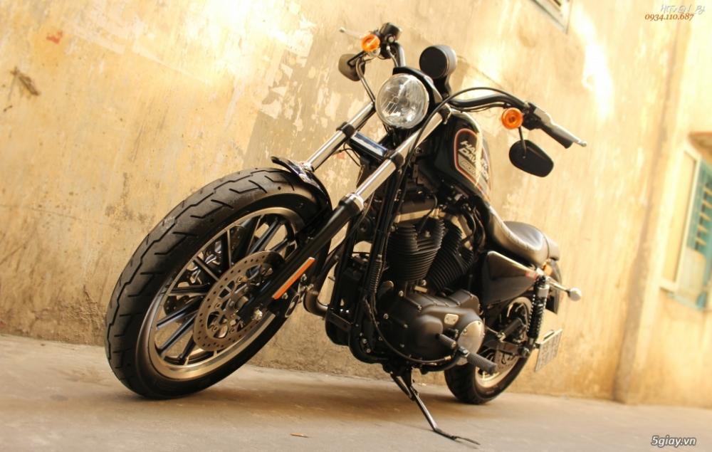 ___ Can Ban ___HARLEY DAVIDSON 883 Roadster 2014___ - 7