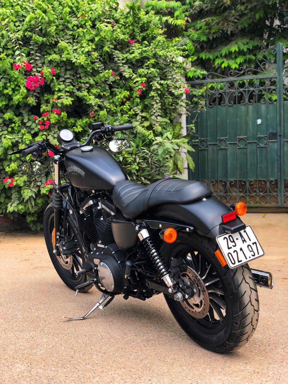 Harley Davidson Iron 883 - 7