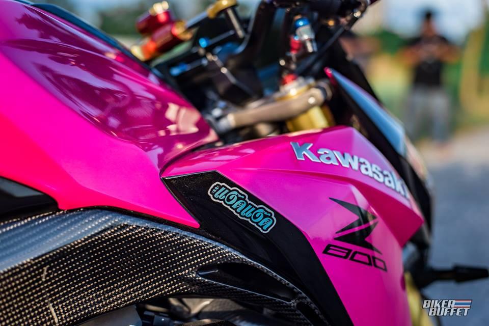 Kawasaki Z800 ban do Hong Candy day goi cam - 8
