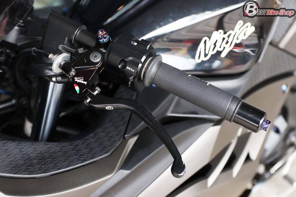 Kawasaki Ninja 300 do kich doc voi than hinh Matte Black - 6