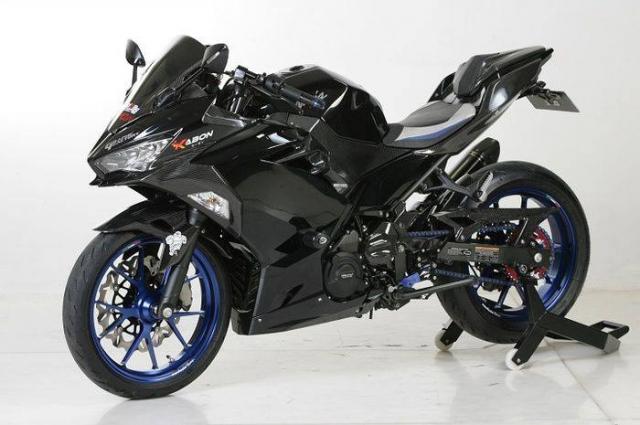 Kawasaki Ninja 250 Tai tu dac sac voi dan trang bi khung