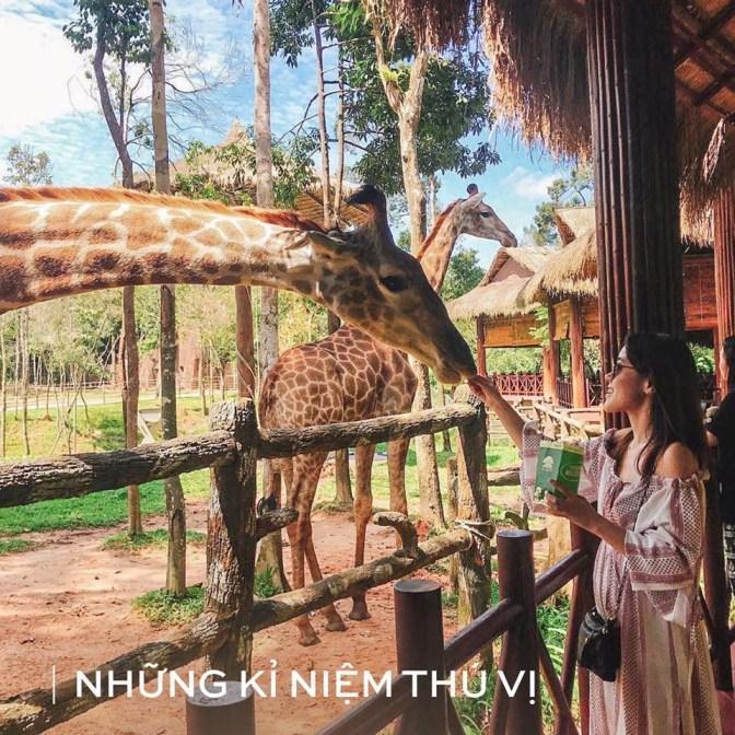 3 cach don chao nam moi 2019 nhieu may man tren Dao Ngoc Phu Quoc - 7