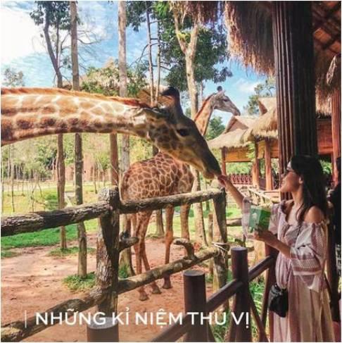 3 cach don chao nam moi 2019 nhieu may man tren Dao Ngoc Phu Quoc - 6
