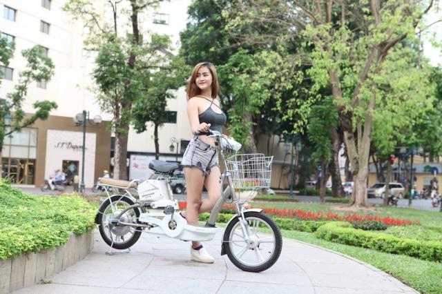 Xe dien Bridgestone PKD18 chinh hang tu Nhat - 2
