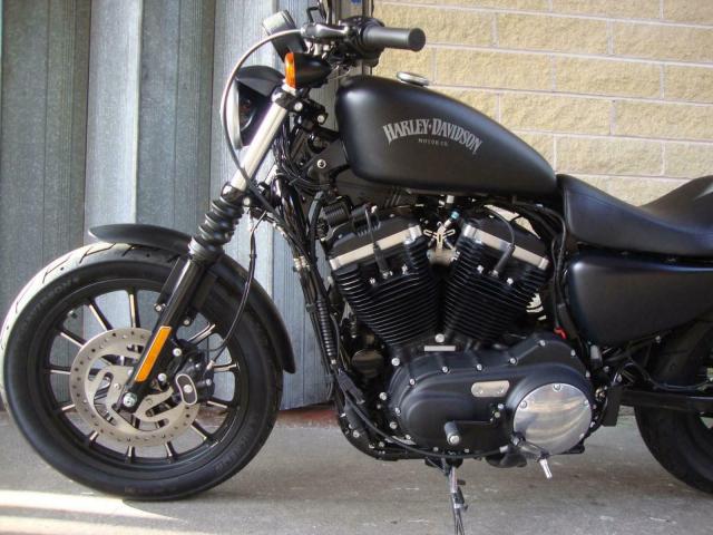Can ban xe HarleyDavidson XL883N Ironzalo0943088479xem hinh - 10