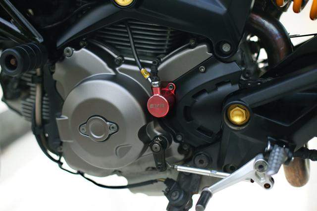 Ducati Monster 796 2014 phien ban mat troi trong dem do choi ngap mat - 15