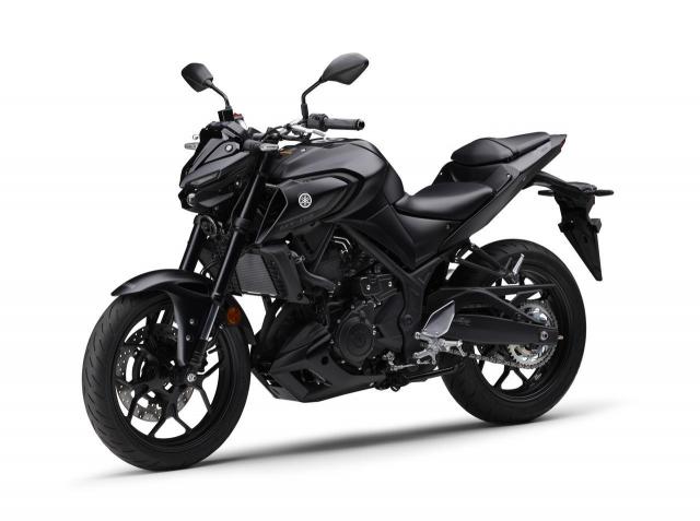 Yamaha Nhat Ban phat hanh phien ban moi MT25 MT03 2021 - 8