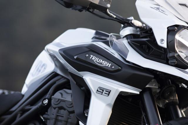 Triumph Tiger 1200 Desert 2021 va Tiger 1200 Alpine Special Edition trinh lang - 14